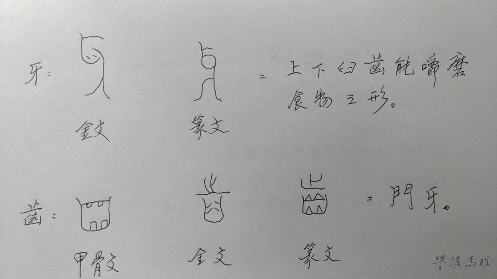 圖1.牙、齒的古文字結構圖。